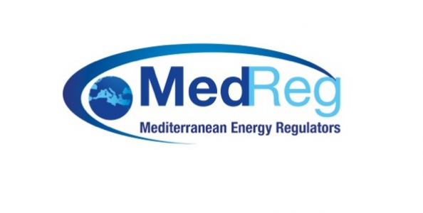 Launching event of the Euro-Med platforms